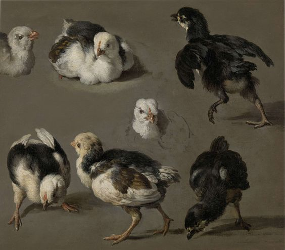 Seven Chicks 1665 EDM 1704017